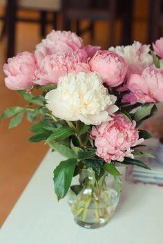 Ausmalbilder Blumenstrauß Mit Vase Neu Die 142 Besten Bilder Von Flowers Into Vase ◕‿◕✿ Galerie