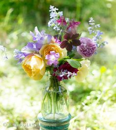 Ausmalbilder Blumenstrauß Mit Vase Neu Die 142 Besten Bilder Von Flowers Into Vase ◕‿◕✿ Stock