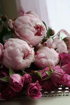 Ausmalbilder Blumenstrauß Mit Vase Neu Die 1588 Besten Bilder Von Blumen Flowers Pastell Peonien Rosen Fotografieren