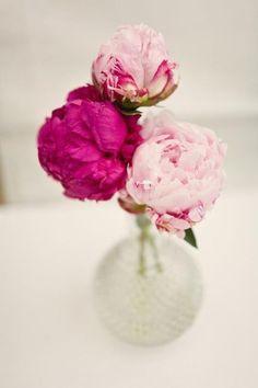 Ausmalbilder Blumenstrauß Mit Vase Neu Die 1588 Besten Bilder Von Blumen Flowers Pastell Peonien Rosen Sammlung