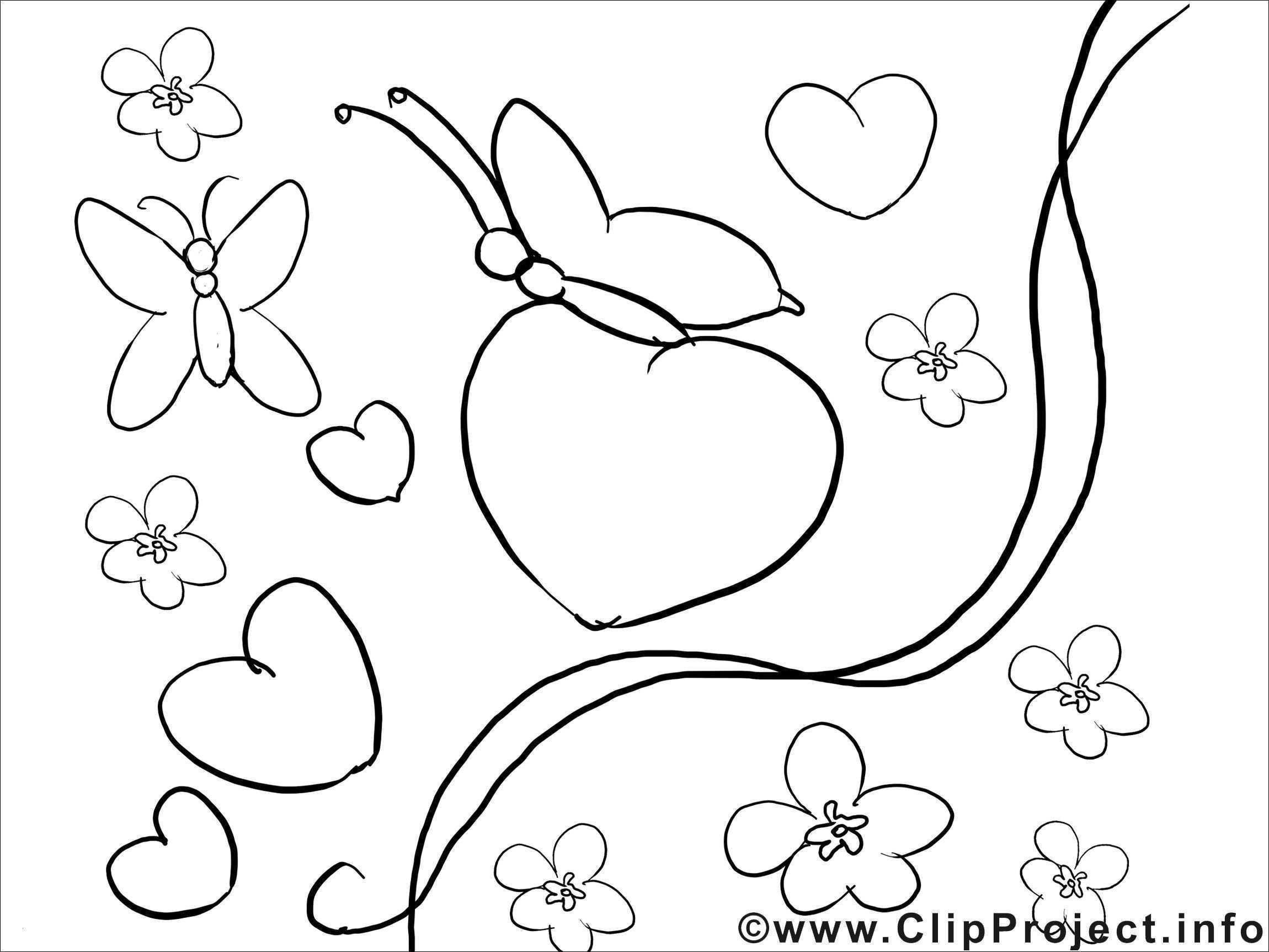 Ausmalbilder Bugs Bunny Neu Malvorlagen Bugs Bunny Aufnahme Bugs Bunny Wallpapers for Desktop Fotografieren