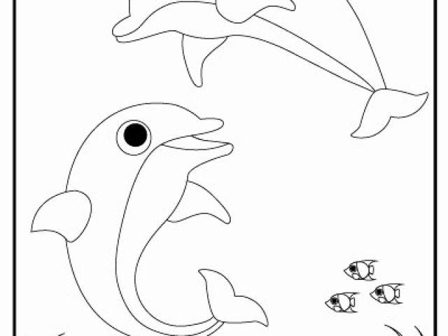 Ausmalbilder Delphine Zum Ausdrucken Das Beste Von Ausmalbild Delfin Zum Ausdrucken Luxury Delfin Bilder Zum Ausdrucken Galerie