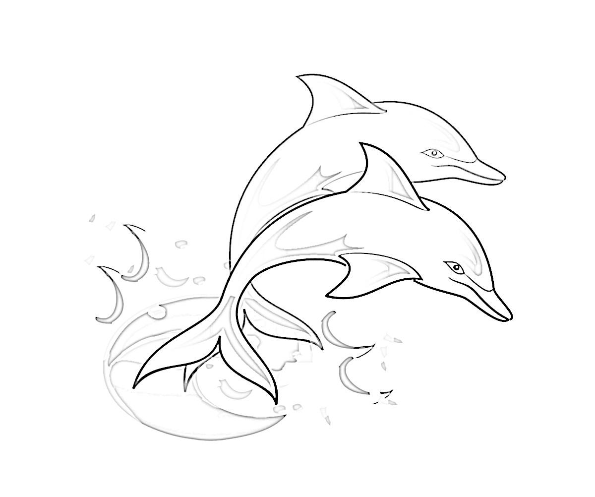 Ausmalbilder Delphine Zum Ausdrucken Das Beste Von Dinotrux Ausmalbild Tags Ausmalbild Dino Bastelvorlage Igel Zum Galerie