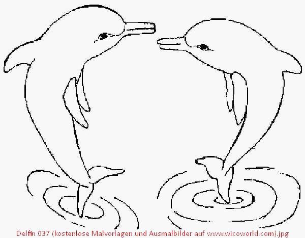Ausmalbilder Delphine Zum Ausdrucken Frisch Malvorlage Delphin Zum Ausdrucken Beispiel Ausmalbilder Wassertiere Fotografieren