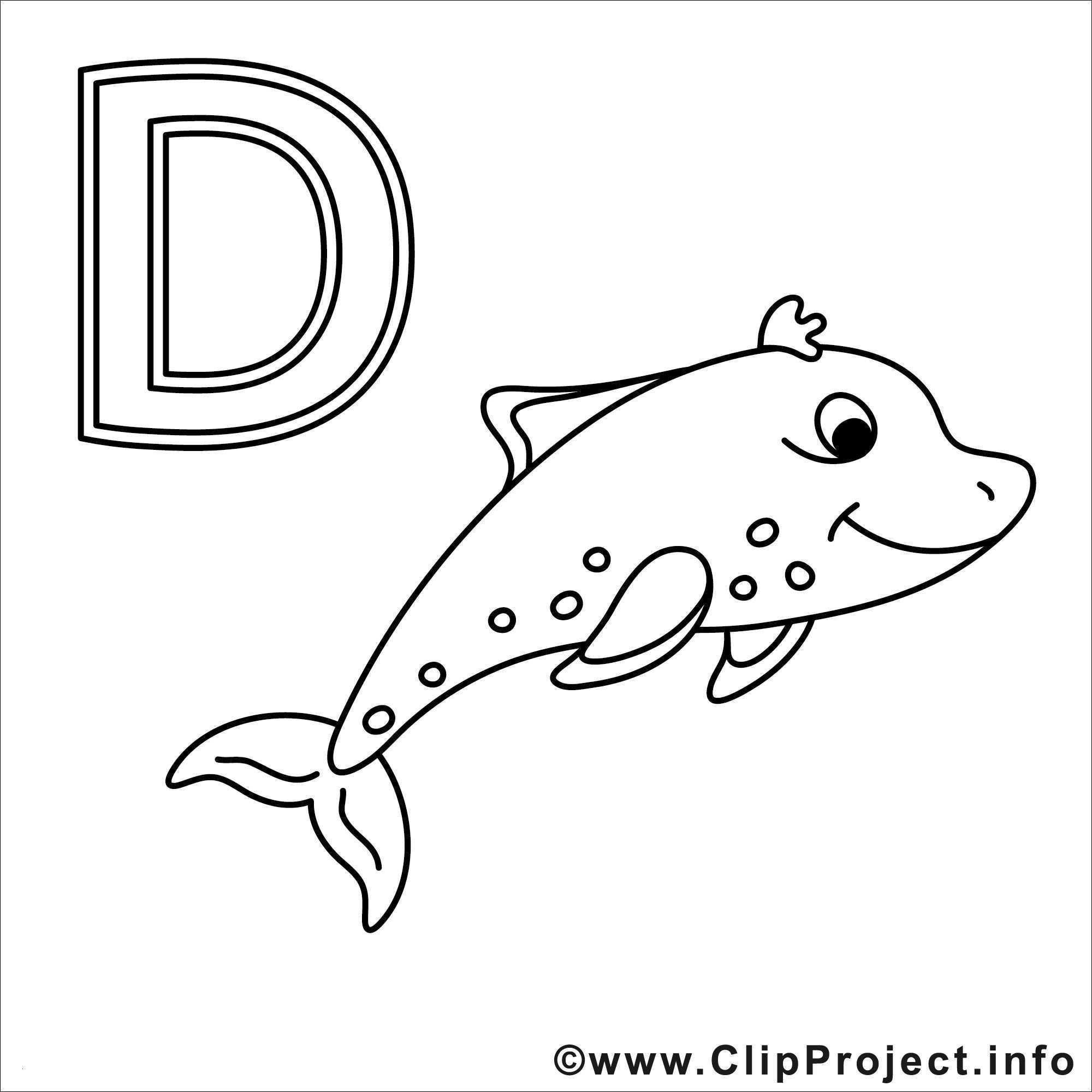 Ausmalbilder Delphine Zum Ausdrucken Genial Ausmalbilder Delfine Zum Ausdrucken Image Malvorlagen Delfine Und Stock