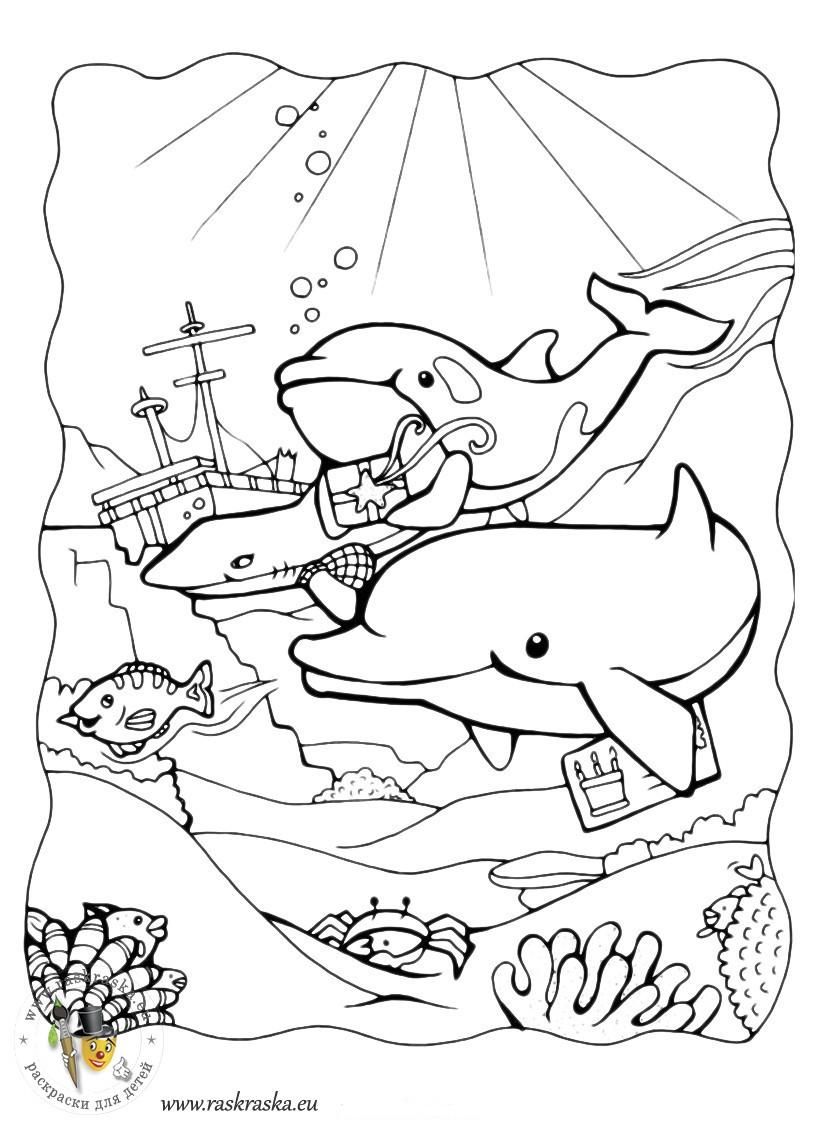 Ausmalbilder Delphine Zum Ausdrucken Inspirierend Ausmalbilder Zum Ausdrucken Delfin Fotos