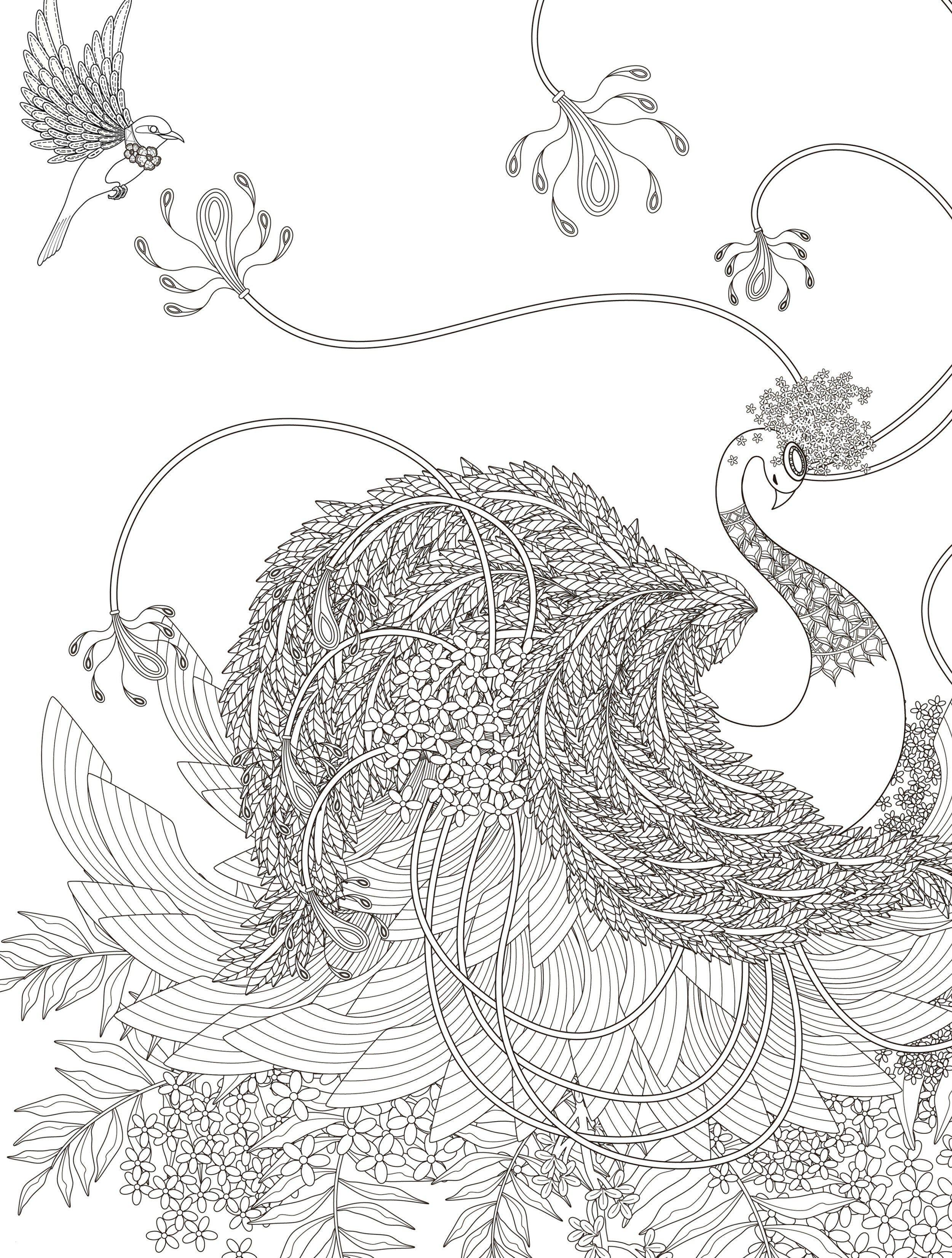 Ausmalbilder Dragons Auf Zu Neuen Ufern Frisch 40 Ausmalbilder Blumen Zum Ausdrucken Scoredatscore Genial Bilder