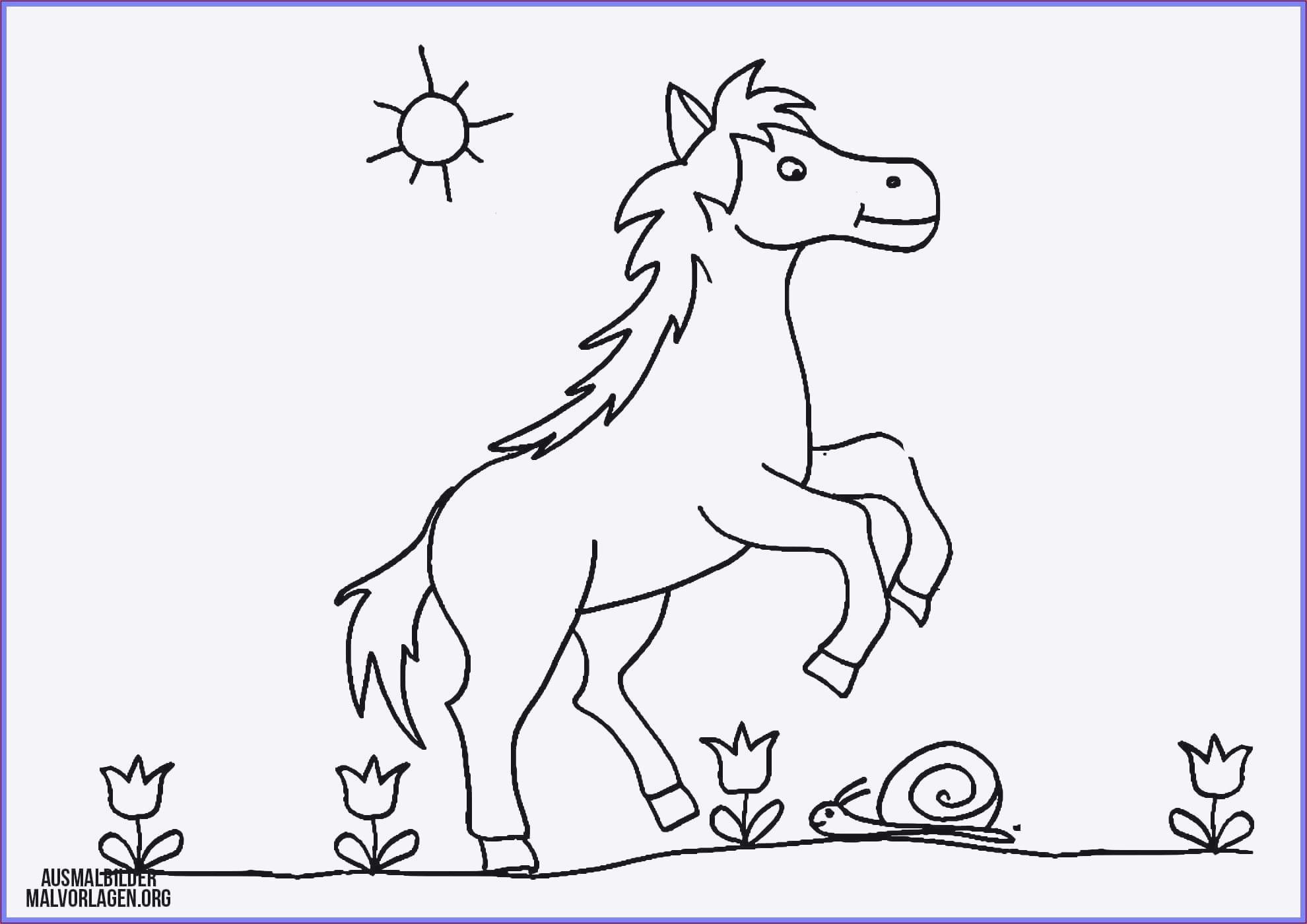 Ausmalbilder Dragons Auf Zu Neuen Ufern Inspirierend 37 Ausmalbilder Pferd Mit Fohlen Scoredatscore Schön Ausmalbilder Fotografieren