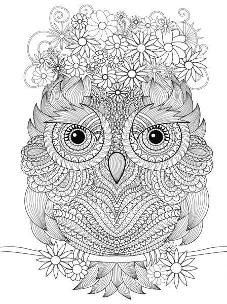 Ausmalbilder Fur Erwachsene Wolf Einzigartig 1431 Best Coloring Eeek so Fun Images On Pinterest Das Bild