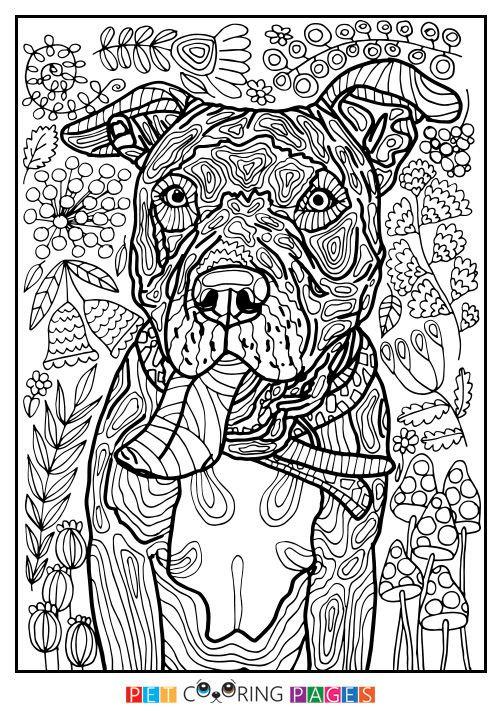 Ausmalbilder Für Erwachsene Wolf Neu 1431 Best Coloring Eeek so Fun Images On Pinterest Das Bild