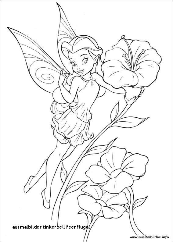 Ausmalbilder Feen Kostenlos Neu Ausmalbilder Tinkerbell Feenflugel Barbie Free Superhero Coloring Sammlung