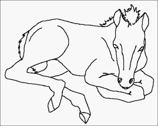Ausmalbilder Filly Pferd Das Beste Von Window Color Vorlagen Weihnachten Zum Ausdrucken Beratung Malvorlage Bilder