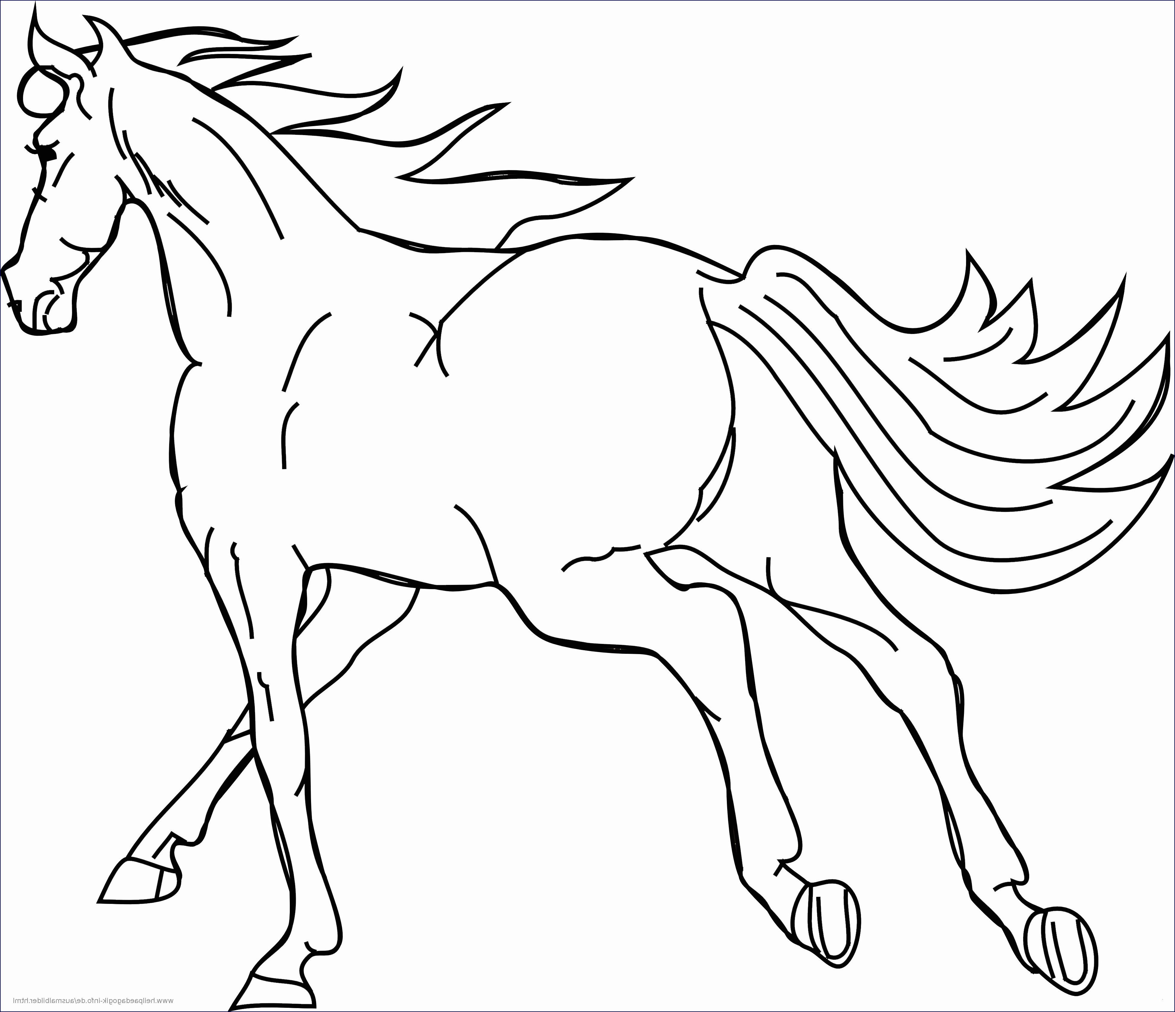 Ausmalbilder Filly Pferd Einzigartig 30 Fantastisch Conni Ausmalbilder – Malvorlagen Ideen Stock