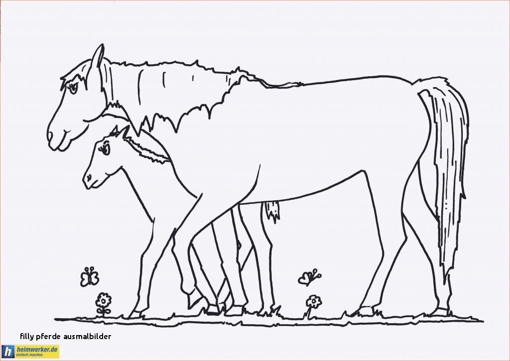 Ausmalbilder Filly Pferd Inspirierend Filly Pferde Ausmalbilder Filly Pferd Ausmalbilder Neu 25 Druckbar Das Bild