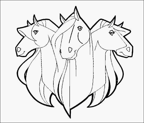 Ausmalbilder Filly Pferd Neu Window Color Vorlagen Weihnachten Zum Ausdrucken Beratung Malvorlage Bild