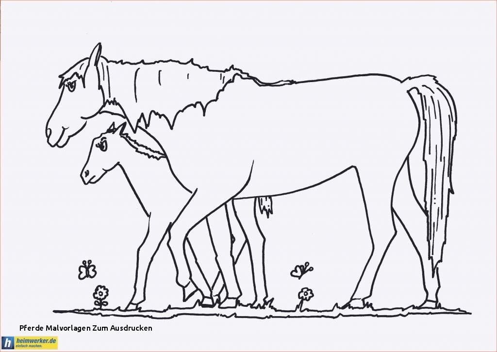 Ausmalbilder Filly Pferde Das Beste Von Pferde Malvorlagen Zum Ausdrucken 37 Einfache Malvorlagen Bilder