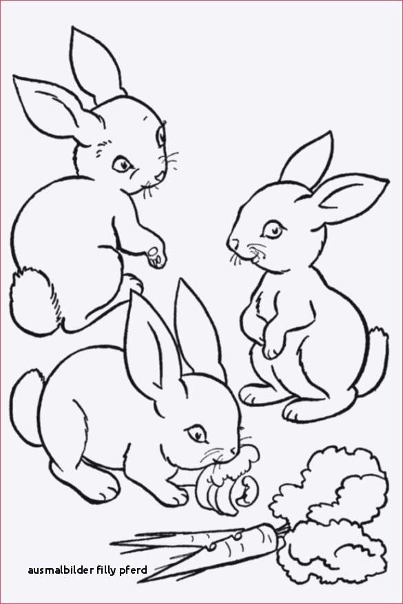 Ausmalbilder Filly Pferde Genial Ausmalbilder Filly Pferd Ausmalbilder Kaninchen Colorprint Fotos