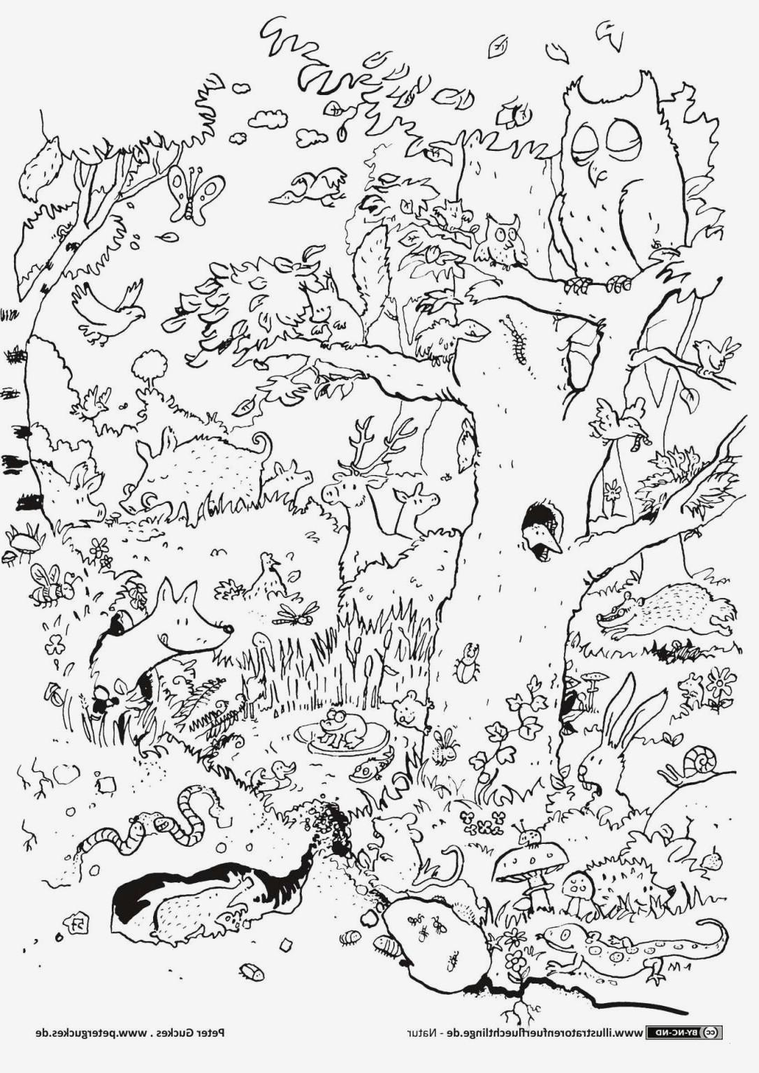 Ausmalbilder Frohe Ostern Genial 32 Lecker Oster Ausmalbilder – Malvorlagen Ideen Galerie