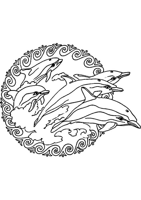 Ausmalbilder H2o Plötzlich Meerjungfrau Inspirierend Malvorlagen Delphin Meerjungfrau Zum Drucken Bild