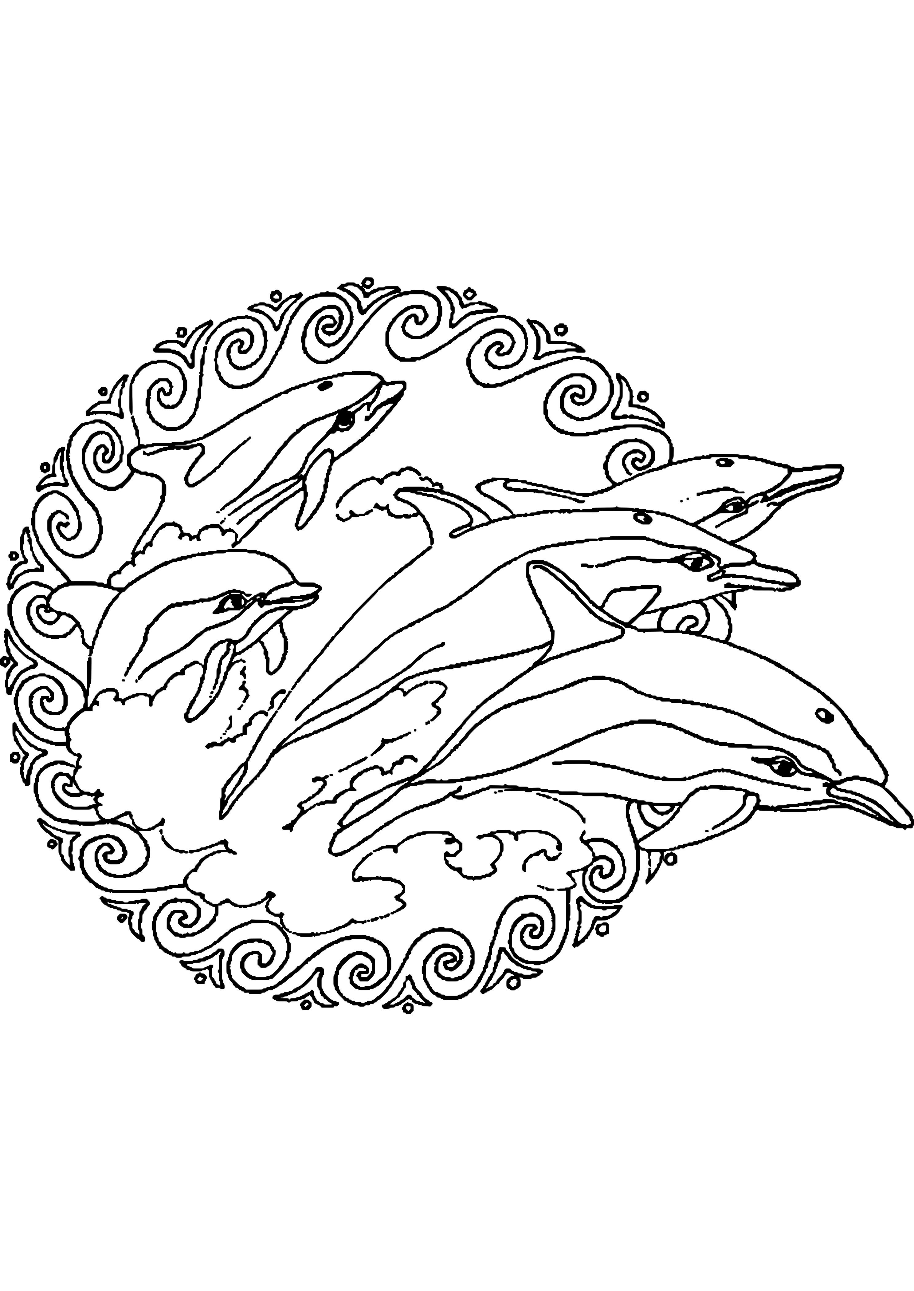 Ausmalbilder H2o Plötzlich Meerjungfrau Inspirierend Malvorlagen Delphin Meerjungfrau Zum Drucken Sammlung