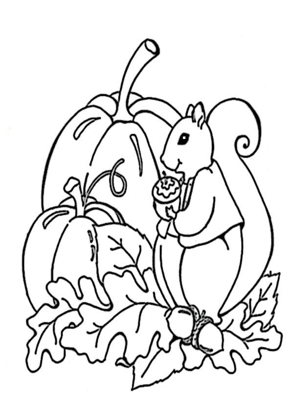 Ausmalbilder Herbst Eichhörnchen Frisch Herbst 6 Stock