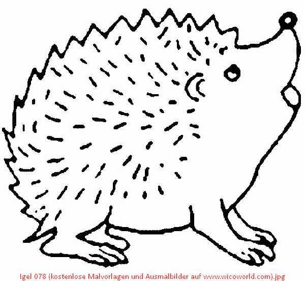 Ausmalbilder Herbst Eichhörnchen Frisch Schön Schatten Die Igel Malvorlagen Bilder Ideen Sammlung
