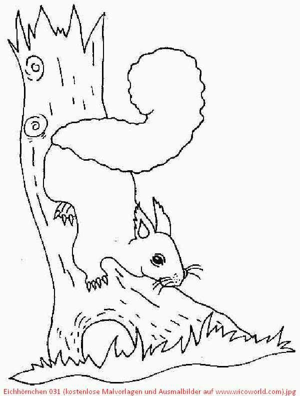 Ausmalbilder Herbst Eichhörnchen Genial Charmant Baby Eichhörnchen Malvorlagen Bilder Beispiel Bilder