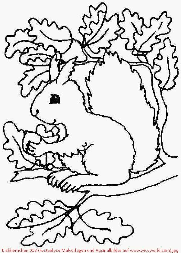 Ausmalbilder Herbst Eichhörnchen Inspirierend Malvorlagen Herbst Eichhörnchen Galerie