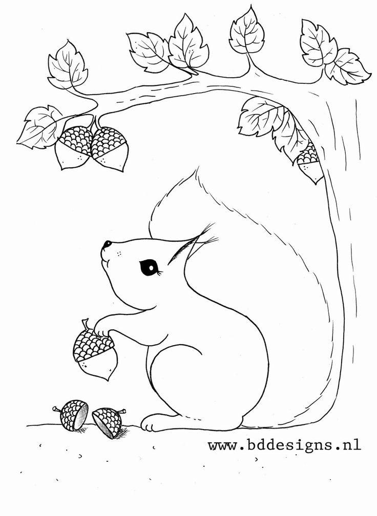 """Ausmalbilder Herbst Eichhörnchen Inspirierend Über 1 000 Ideen Zu """"eichhörnchen Basteln Auf Pinterest Stock"""
