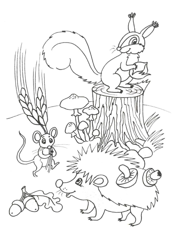 Ausmalbilder Herbst Eichhörnchen Neu Ausmalbilder Herbst Malvorlagen Ausdrucken 3 Fotos