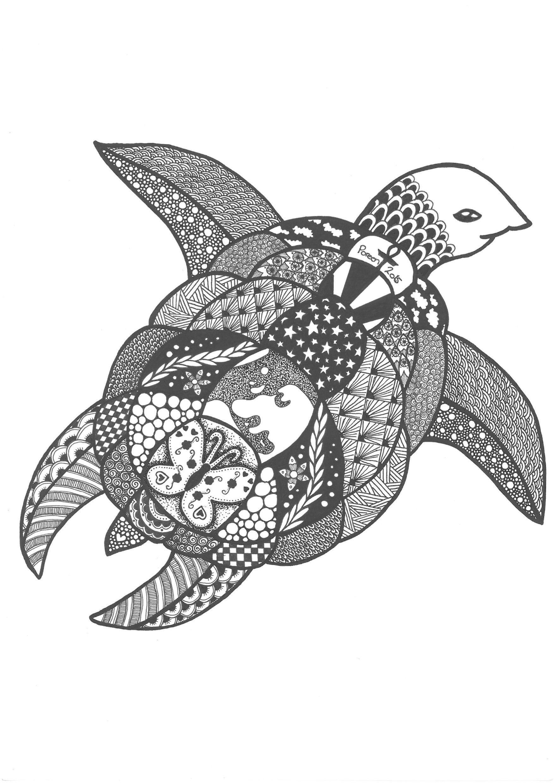 Ausmalbilder Herbst Eule Genial Eule Ausmalbilder Zum Ausdrucken Best Zentangle Turtle by Sammlung