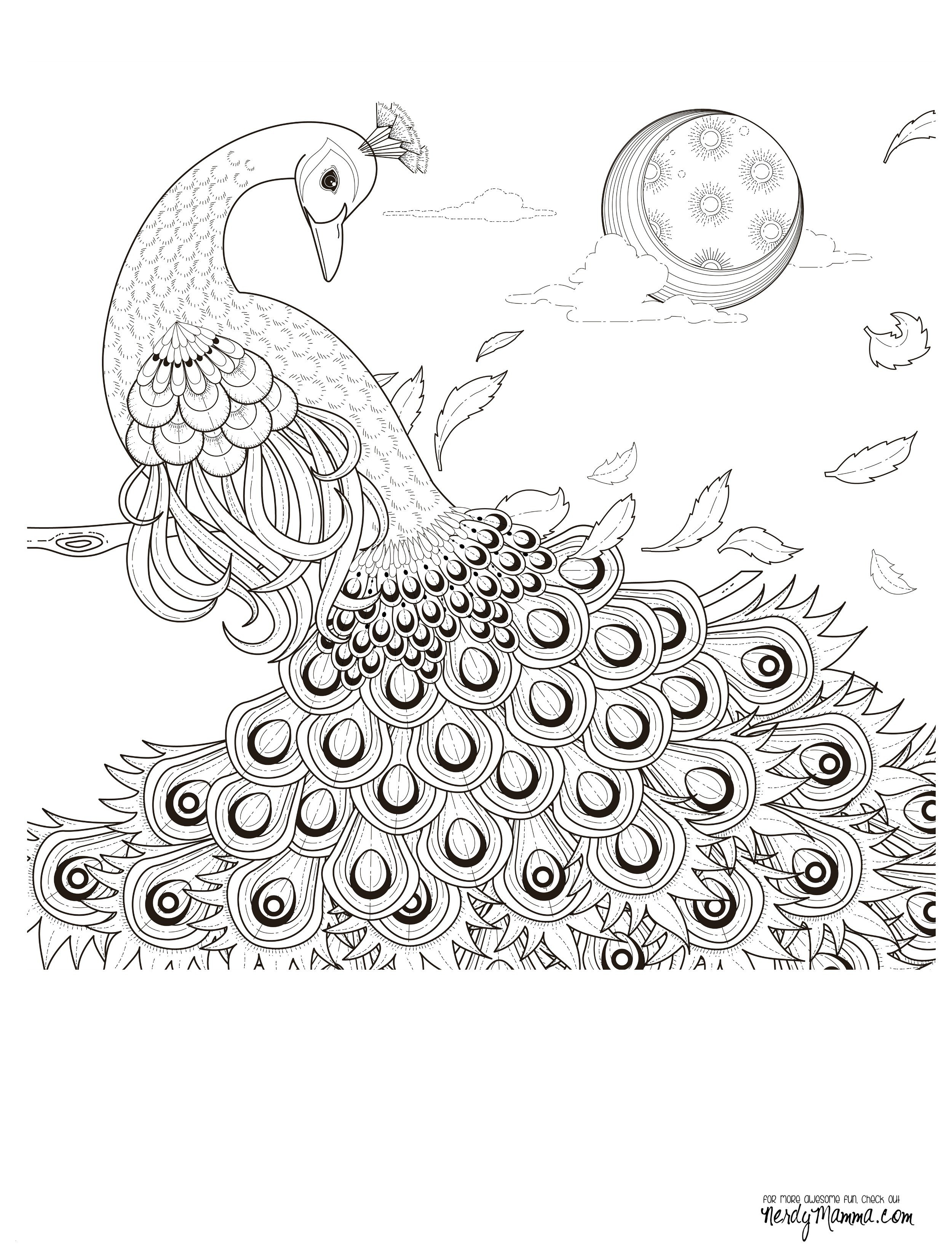 Ausmalbilder Herbst Eule Inspirierend Ausmalbilder Sam Uploadertalk Neu Herbst Ausmalbilder Pilze Genial Bild