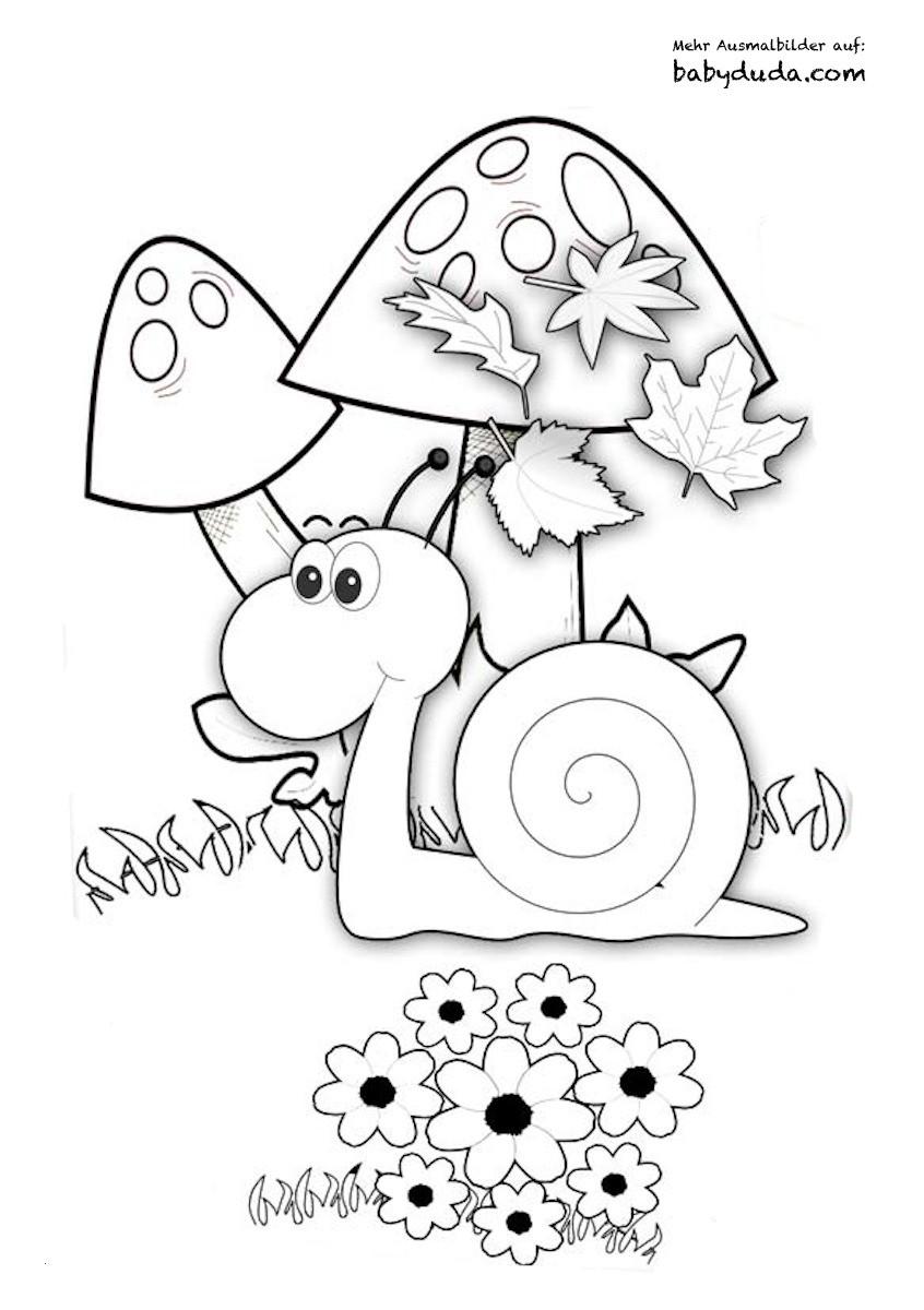 Ausmalbilder Herbst Pilze Genial 35 Ausmalbilder Herbst Pilze forstergallery Das Bild