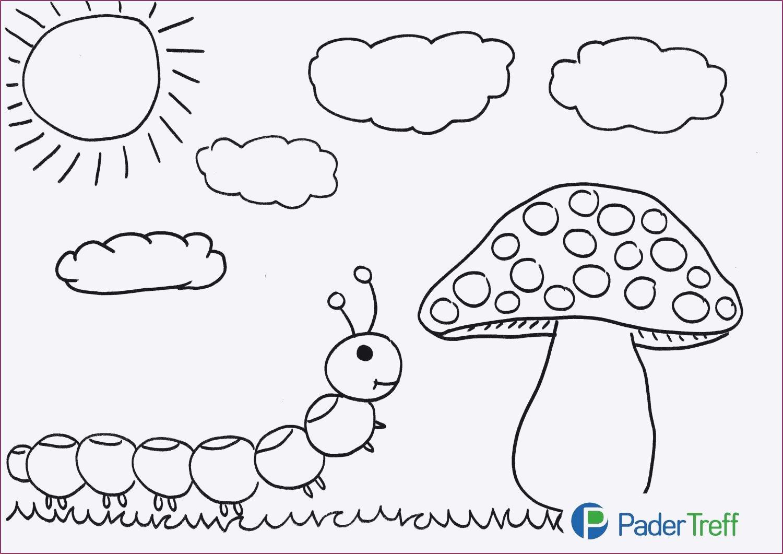 Ausmalbilder Herbst Pilze Inspirierend Ausmalbilder Herbst Pilze Fotografieren