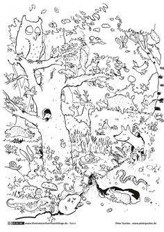 Ausmalbilder Herbst Tiere Das Beste Von Natur Wald Herbst Tiere Malvorlage Kindergarten Bilder
