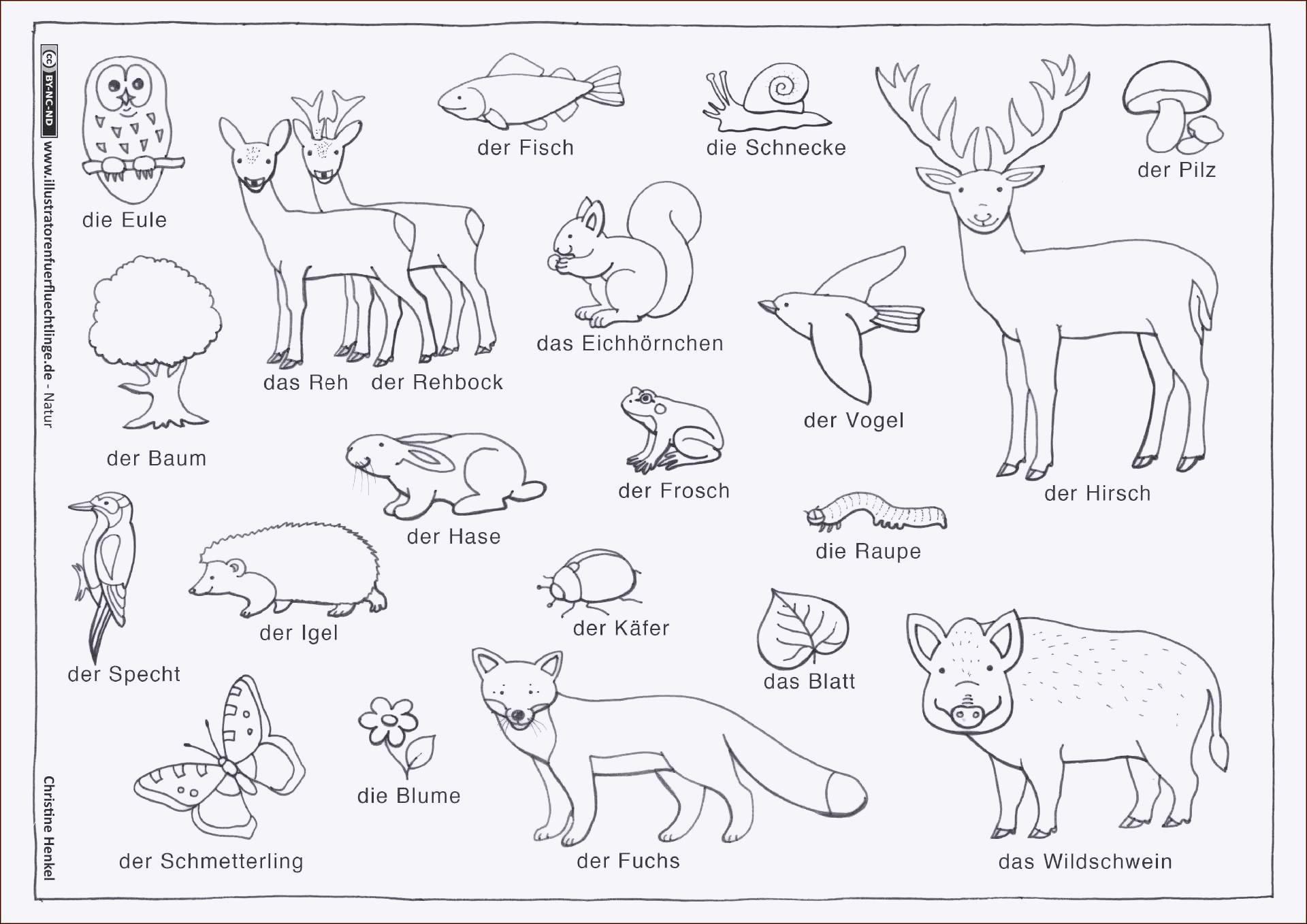 Ausmalbilder Herbst Tiere Inspirierend Malvorlagen Herbst Eichhornchen Sammlung