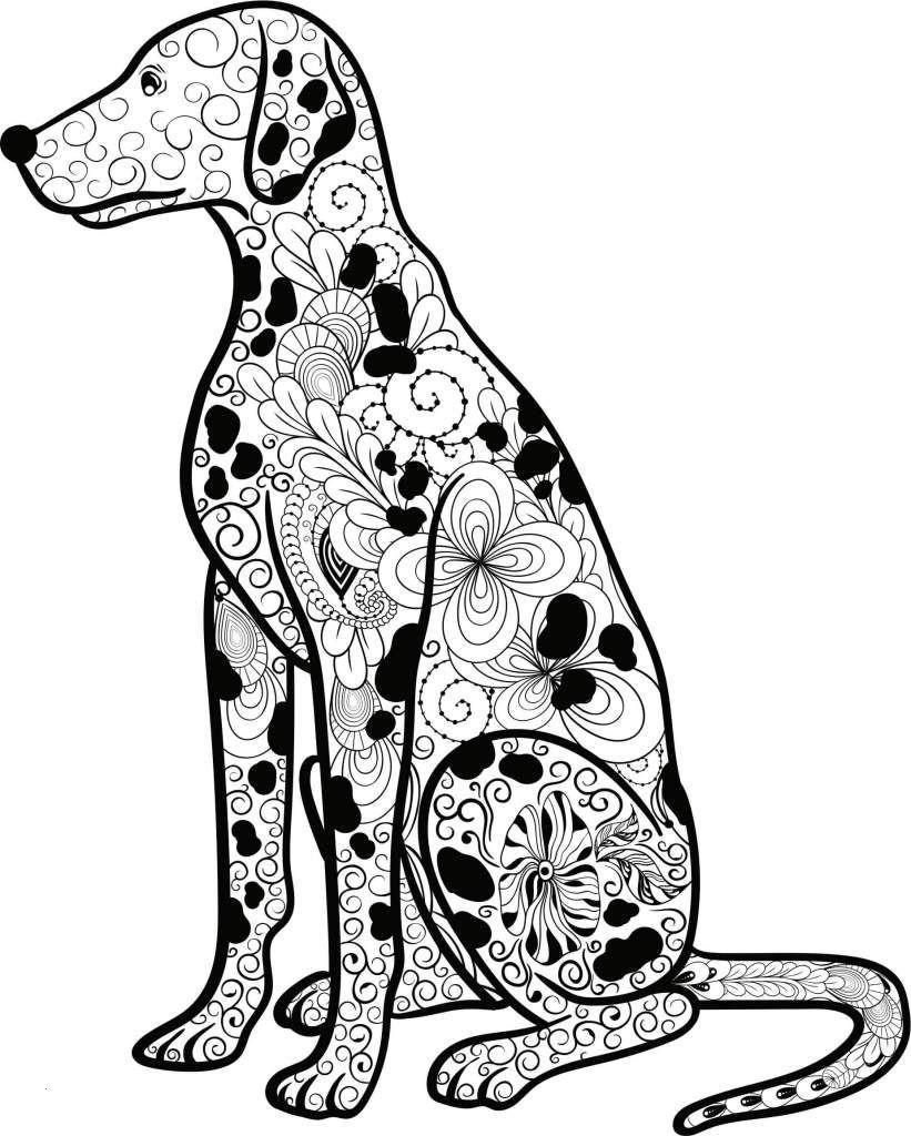 Ausmalbilder Hund Und Katze Das Beste Von Kostenloses Ausmalbild Hund Dalmatiner Die Gratis Mandala Best Galerie