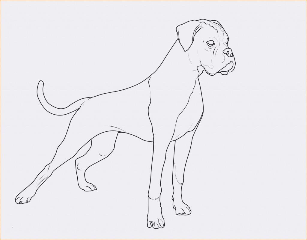 Ausmalbilder Hunde Baby Das Beste Von Spannende Coloring Bilder Malvorlagen Katzen Und Hunde Sammlung