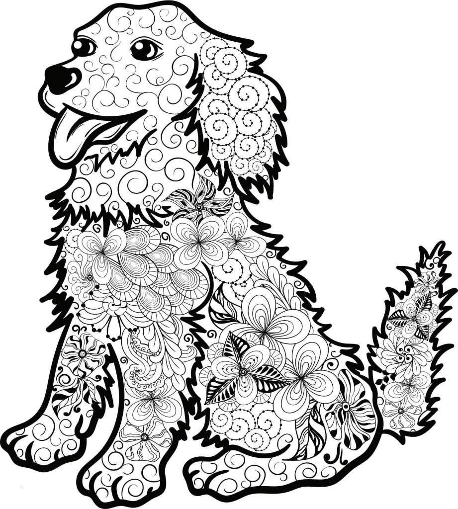 Ausmalbilder Hunde Baby Inspirierend 30 Ausmalbilder Hunde Zum Ausdrucken forstergallery Luxus Bild