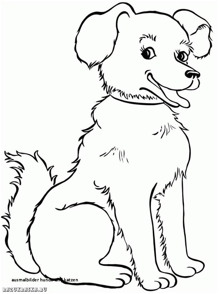 Ausmalbilder Hunde Und Katzen Das Beste Von Ausmalbilder Hunde Und Katzen 32 Ausmalbilder Hund Und Katze Galerie