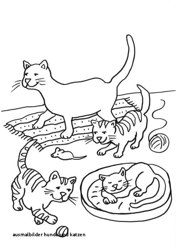 Ausmalbilder Hunde Und Katzen Einzigartig Ausmalbilder Hunde Und Katzen Ausmalbild Katze Druckfertig Stock