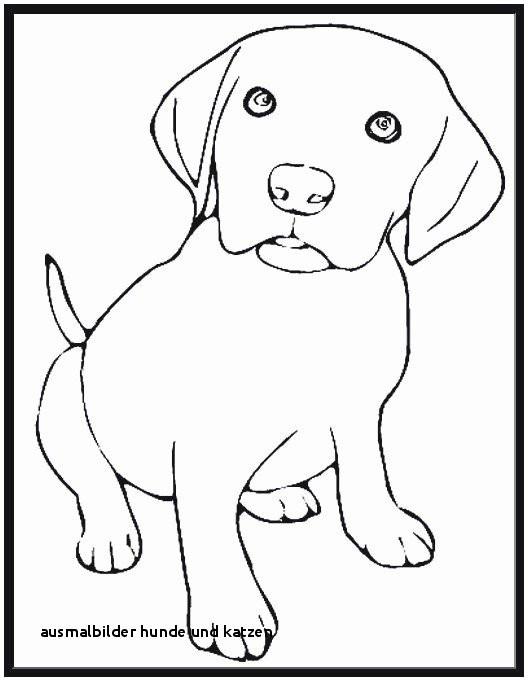 Ausmalbilder Hunde Und Katzen Frisch Ausmalbilder Hunde Und Katzen 32 Ausmalbilder Hund Und Katze Das Bild