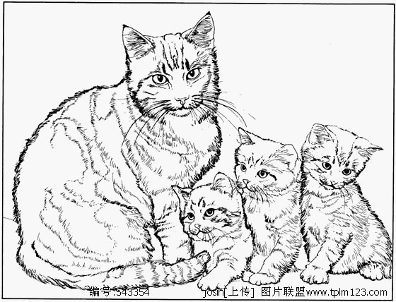 Ausmalbilder Hunde Und Katzen Frisch Ausmalbilder Katzen Und Hunde Malvorlagen Igel Elegant Igel Fotografieren