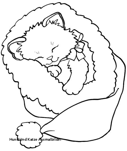 Ausmalbilder Hunde Und Katzen Genial Hund Und Katze Ausmalbilder 35 Ausmalbilder Elefant Und Maus Galerie