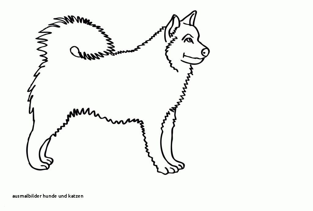 Ausmalbilder Hunde Und Katzen Inspirierend Ausmalbilder Hunde Und Katzen 32 Ausmalbilder Hund Und Katze Sammlung