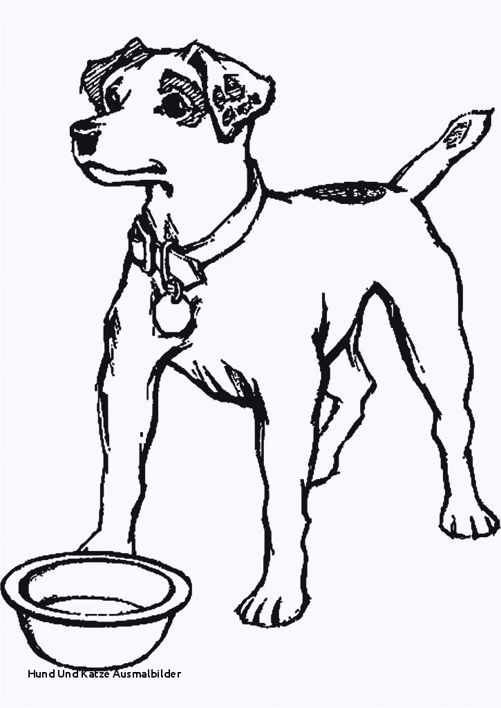 Ausmalbilder Hunde Und Katzen Inspirierend Hund Und Katze Ausmalbilder 35 Ausmalbilder Elefant Und Maus Stock
