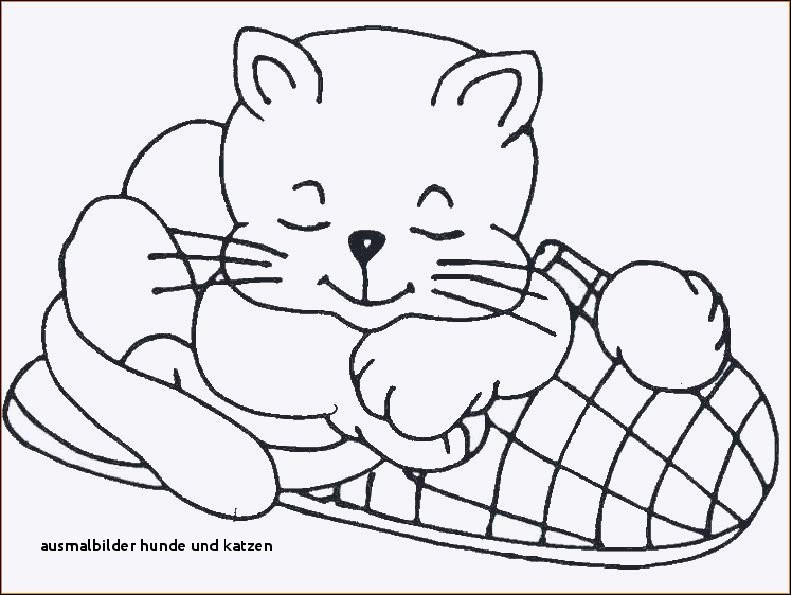 Ausmalbilder Katze Und Hund Frisch Ausmalbilder Hunde Und Katzen Ausmalbilder Kostenlos Katzen Bild