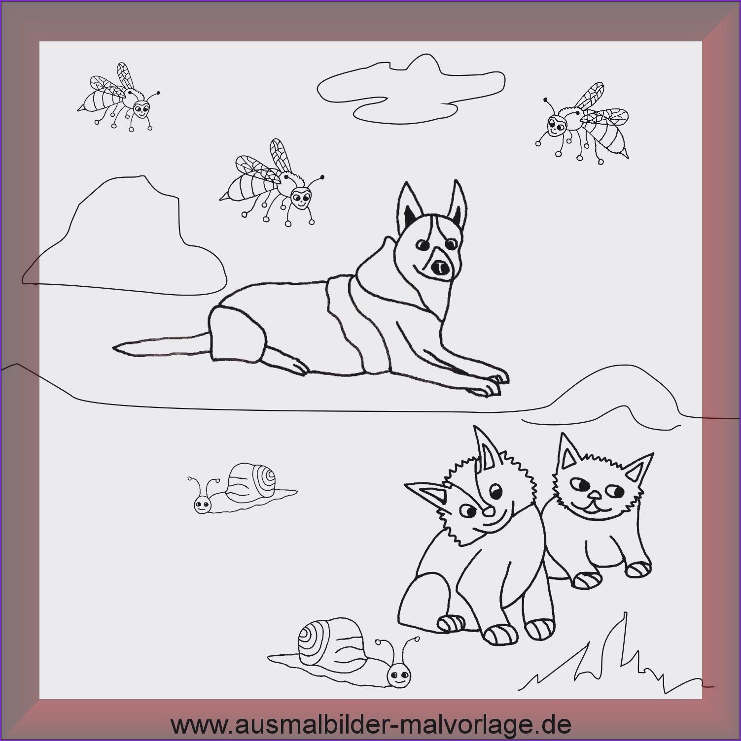 Ausmalbilder Katze Und Hund Inspirierend Verschiedene Bilder Färben Ausmalbilder Barbie Hund Bild