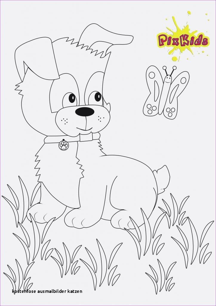 Ausmalbilder Katze Und Hund Neu Kostenlose Ausmalbilder Katzen Kostenloses Ausmalbild Hund Schnauzer Fotos