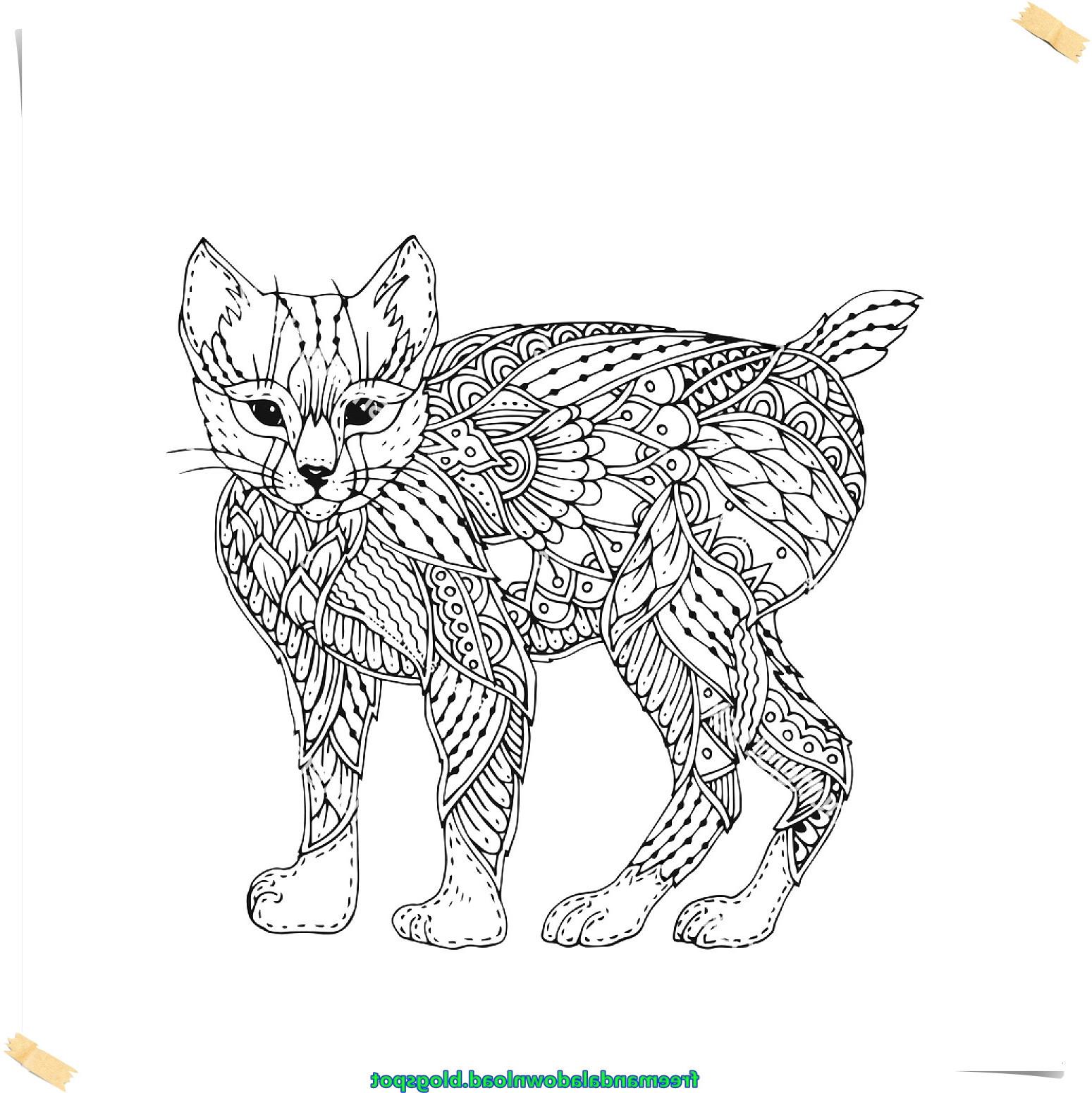 Ausmalbilder Katzen Und Hunde Einzigartig 27 Neu Katzen Ausmalbilder – Malvorlagen Ideen Galerie